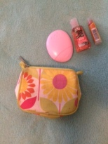 Mini Clinique cosmetic bag, EOS lotion, sanitizer, lip balm