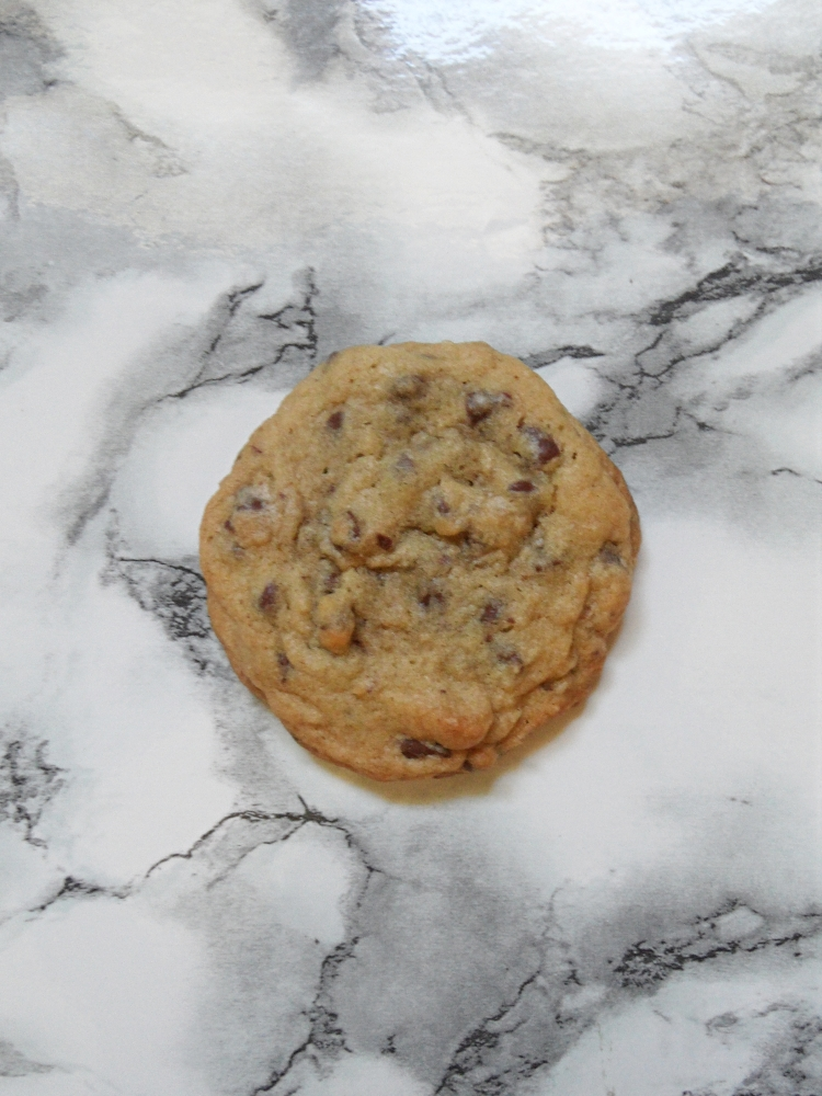 a gooey chocolate chip cookie